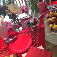 Picnic and Ladybug Themed Baby Shower